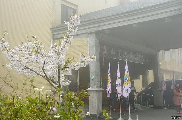 阿里山阁大饭店图片相册